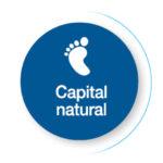 capital-natural
